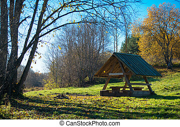Wooden pergola in the autumn forest.