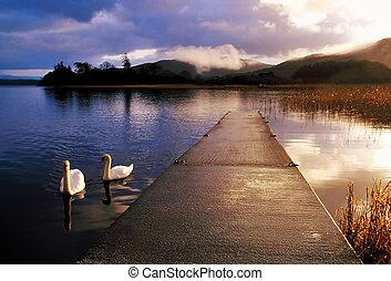 Lough Gill - early morning on Lough Gill, Co.Sligo, Ireland,...