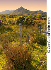 Connemara - early morning sun in Connemara, CoGalway,...