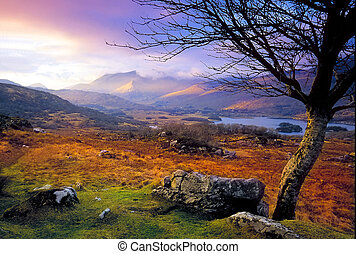 Killarney - late evening view of Killarney, Co.Kerry showing...