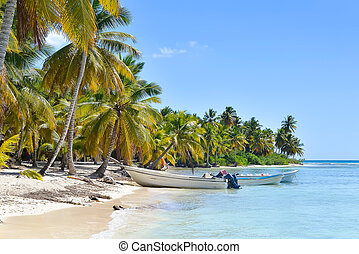Boats and Palm Trees on Exotic Beach at Tropical Island