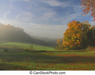 Tree, sunbeam, sunray, landscape, fog - Valley of Dordogne ;...