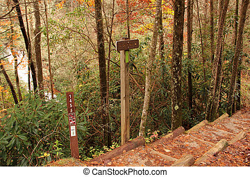 Helton Creek Falls Trailhead