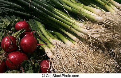 Radish and spring onion on display at the market Food...