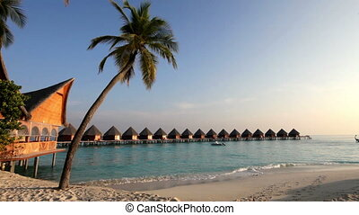 Huts in the sea and a palm tree in a sunny day