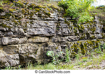 close up of flagstone rock with moss and greens - nature and...