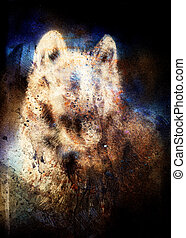 Wolf painting, color abstract effect on background.