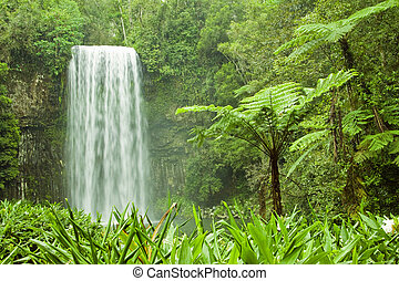 Tropical Cascading Waterfall - A cascading tropical...