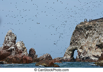 Ballestas Islands, Peruvian Coastline, Paracas National...