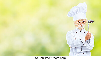 Cat chef - Ginger cat chef over green abstract background