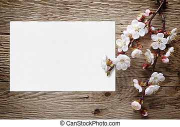 Apricot blossom and blank greeting card on wooden background