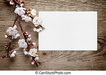 Apricot blossom and greeting card on wooden background
