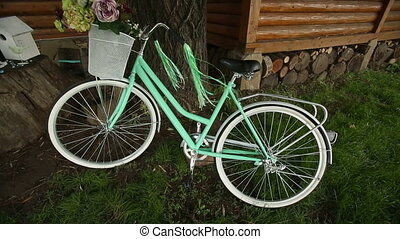 Bicycle With Stylish Decoration - bike for a photo standing...