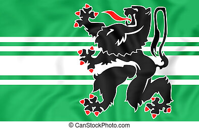 Flag of East Flanders, Belgium. - 3D Flag of East Flanders,...