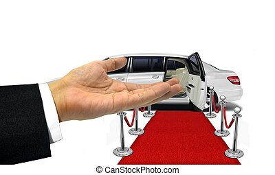 Welcome hand gesture to a white limousine
