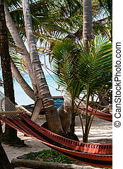 Closeup of Hammock chillout relax Tied to Coconut Trees at...