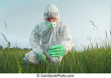 Agronomist examines green plant - Scientist agronomist in...