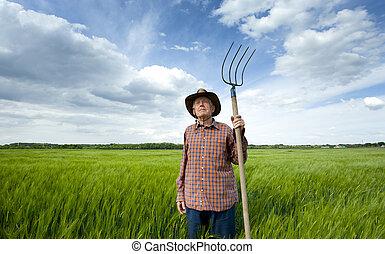 Senior peasant in barley field - Old farmer with hayfork...