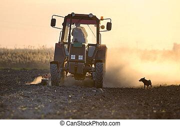 Tractor plowing field - Rural scene of tractor plowing field...