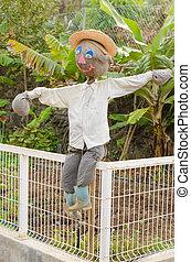 Original scarecrow - Friendly scarecrow in the garden