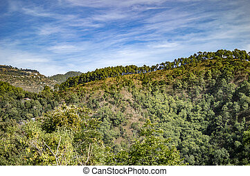 Blue sky and green covered moutains in himalayan range
