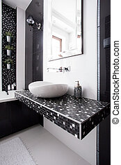 Black and white tiles in contemporary toilet