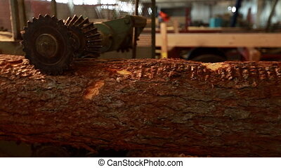 View of log moving by automated machine, close-up