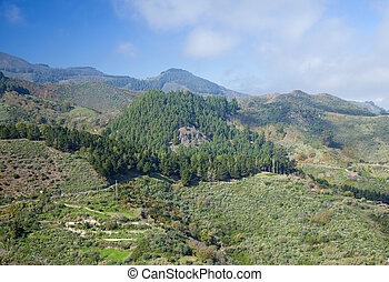 Inland Gran Canaria in November, route Cruz de Tejeda -...