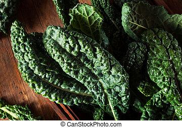 orgánico, verde, Lacinato, col rizada,