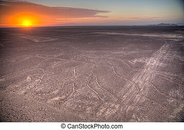 Nazca Lines in the beautiful sunset Top view
