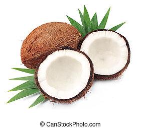 Coconuts, ,