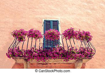 purple flowers balcony