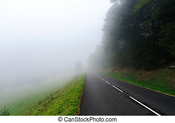 Danger foggy road in the forest, autumnal landscape