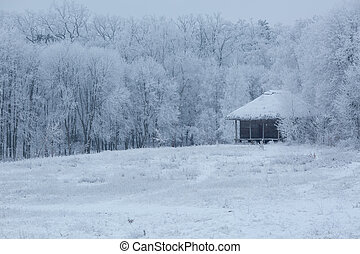 old wooden house in the middle of the forest in winter