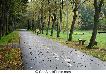 Alley with fallen leaves in autumn park