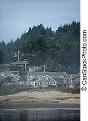 Pretty houses near sea in state Oregon - Beautiful buildings...