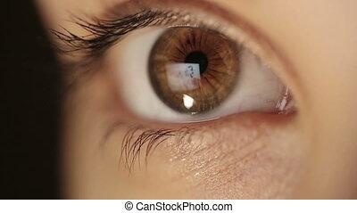 Eye From Light to Dark