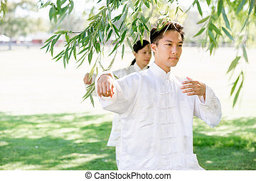 People practicing thai chi in park - People practicing thai...