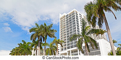 Boulevard in Miami Beach, Florida - Buildings and tall pal...