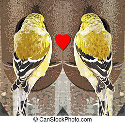 Two Finches meet at a bird feeder and find LOVE