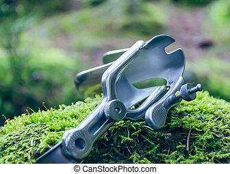 speculum in nature - A speculum in nature on moss