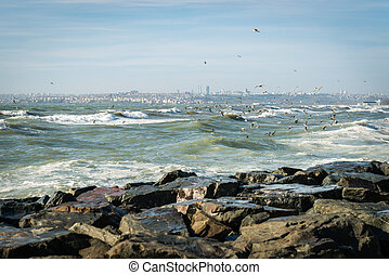 Sea of Marmara on a stormy day - Seagulls over Sea of...