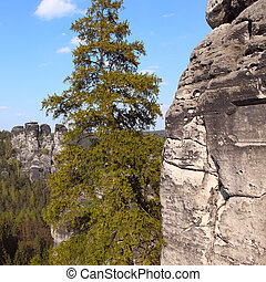 Saxon Switzerland natural reserve - View of the rock...