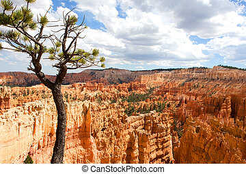 Bryce Canyon Utah Amphitheater - Scenic vista of the...