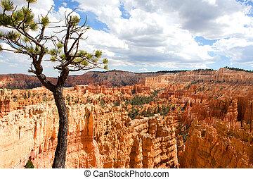 Bryce Canyon Utah Amphitheater - Scenic vista of the...