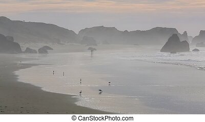 Surf on the Pacific Coast - surf on the Pacific Coast,...