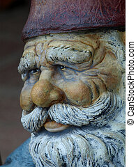 dwarf mans face - the face of a wise dwarf man