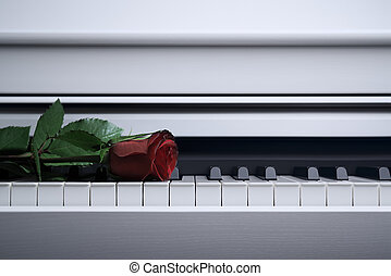 White piano and red rose