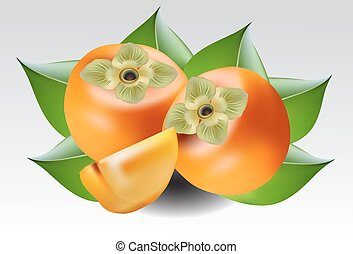 persimmon on  background - persimmon on  grey background