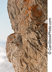 Snowbird 8 - A rough textured rock face covered in orange